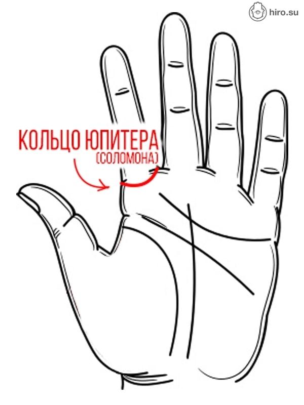 Линии рук на ладони