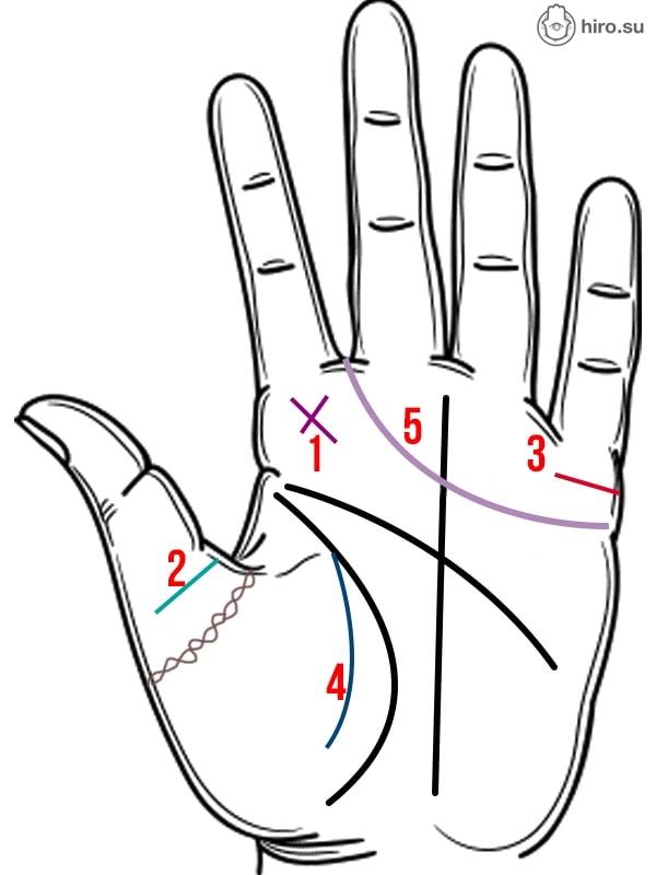 Как выглядит рука человека, которому уготовано быть счастливым в браке