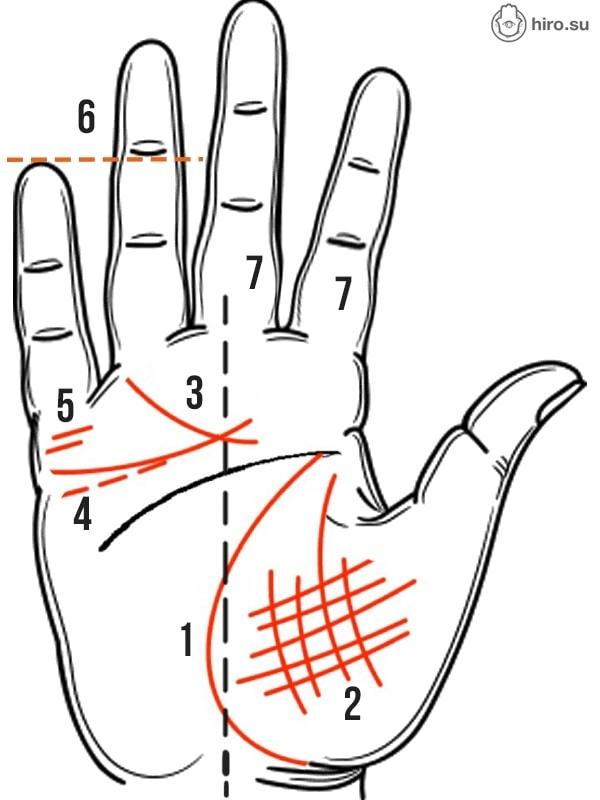 Какие признаки можно встретить на руке человека склонного к измене
